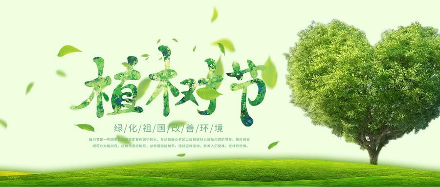 生普公益 | 手植一棵树,心留一片绿,感恩十六年!